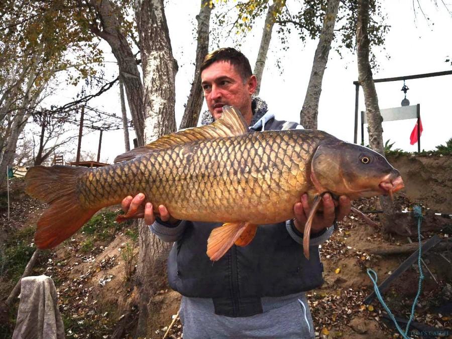 Fishing Charter Ebro Dream Fishing I