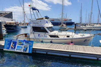 Fishing Charter Galaxia