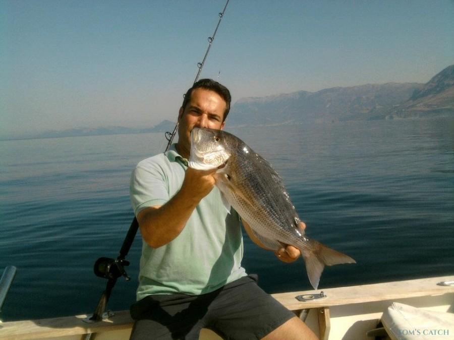 Fishing Charter Galex Fish
