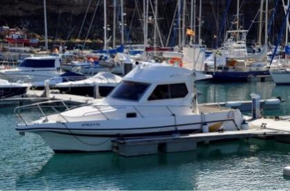 Gatufas Canary Islands fishing