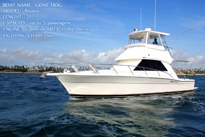 Gone Dog Punta Cana fishing
