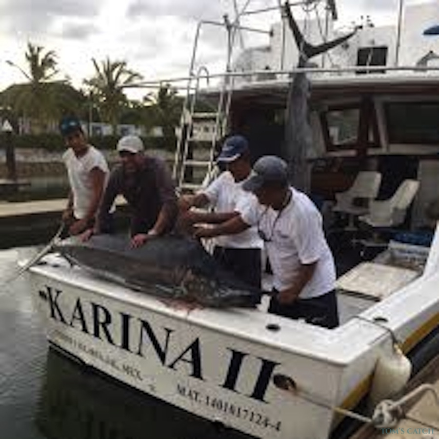 Fishing Charter Karina II