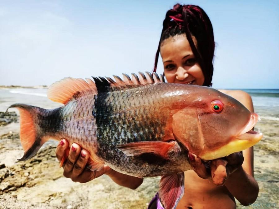 Fishing Charter Maio