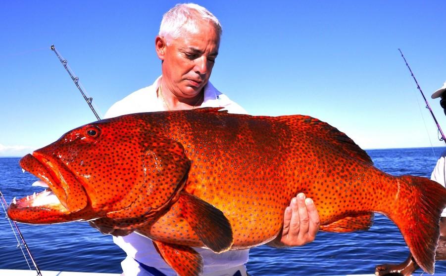 Fishing Charter Manou1