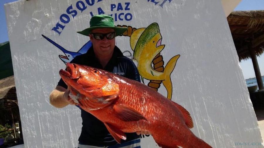 Fishing Charter MV Mambo 5