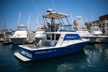 Never Give Up 35 ft Cabo San Lucas fishing