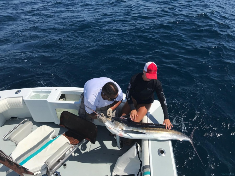 Fishing Charter Never Give Up 35 ft