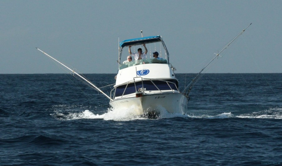 Puerto Colón Fishing trips with Charter No Limits One