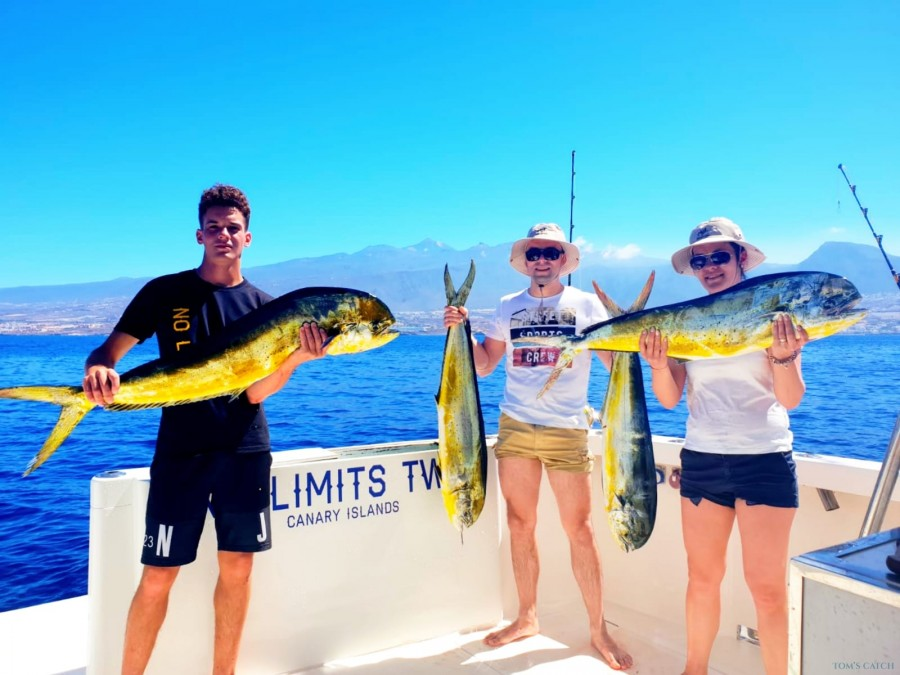 Fishing Charter No Limits One