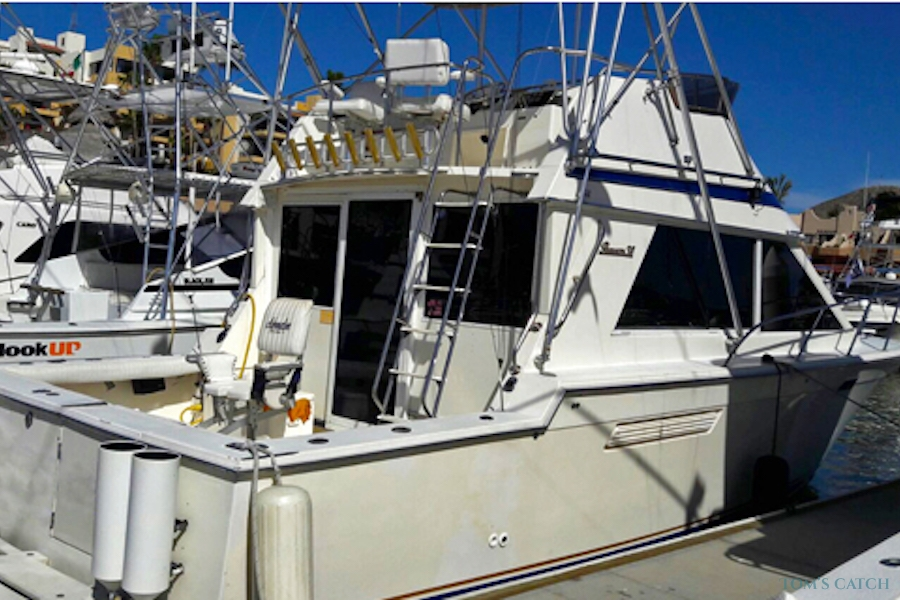 Fishing Charter Persuit 40 FT