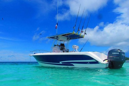 Proline 27 Panama fishing
