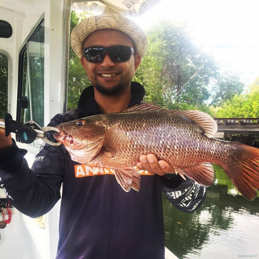 Fishing Charter Reel Escape