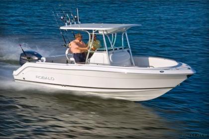 Fishing Charter Robalo 220