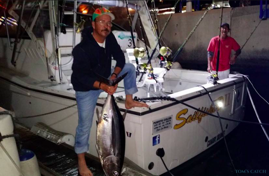 Fishing Charter Sailfisher2