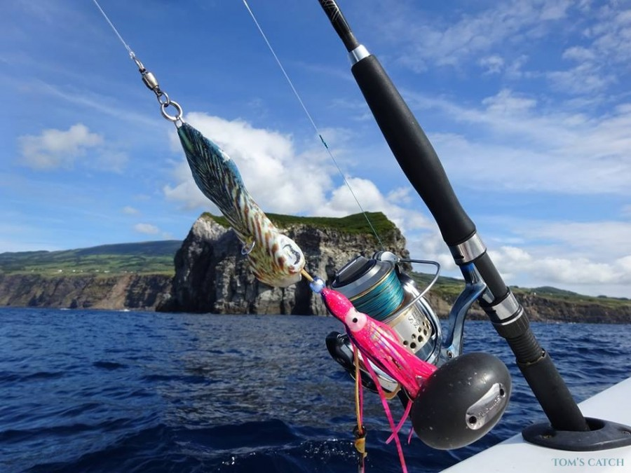 Fishing Charter Seriole
