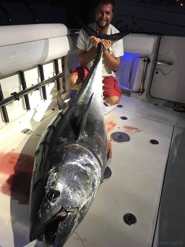 Fishing Charter Sol Banus