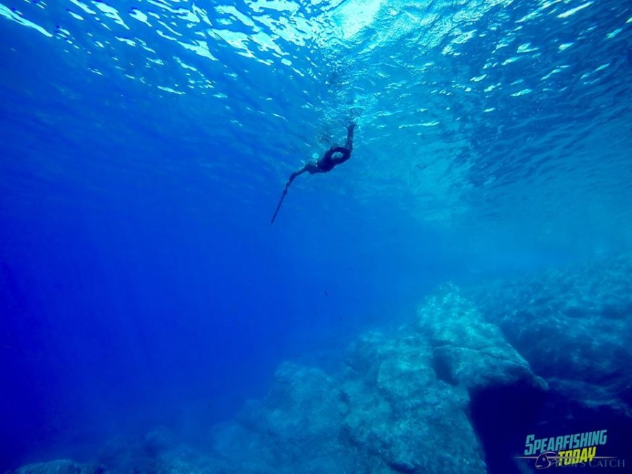 Cancun Fishing trips with Charter Spearfishing Today - Tom's