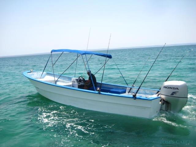 Fishing Charter Super Panga Fleet