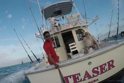 Teaser  fishing