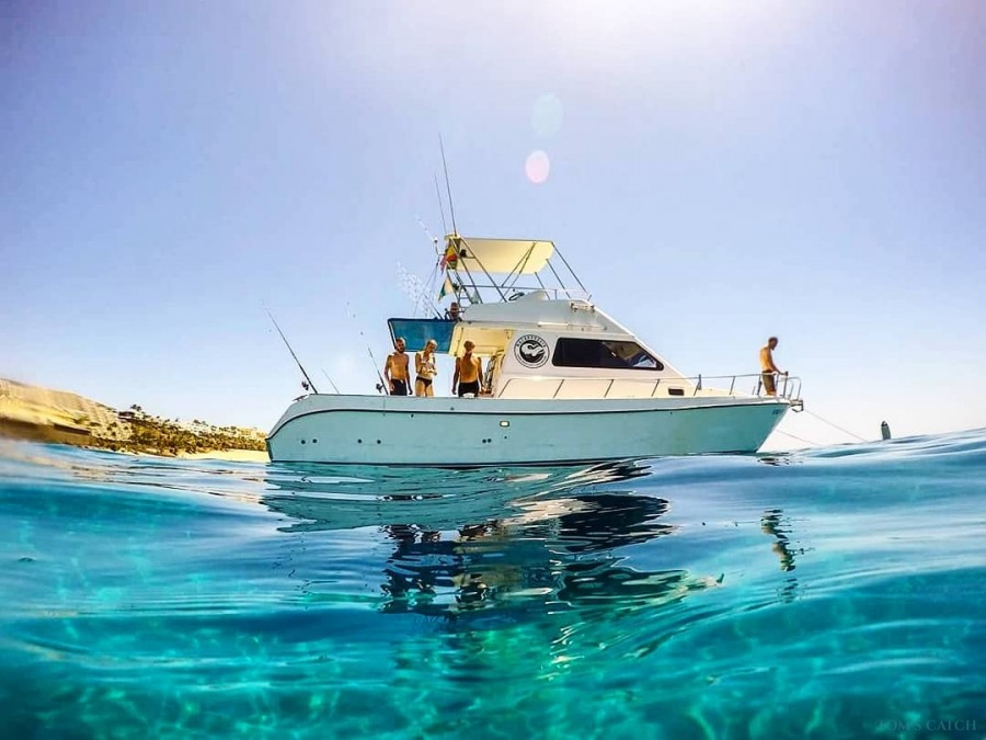 Fishing Charter The Fins