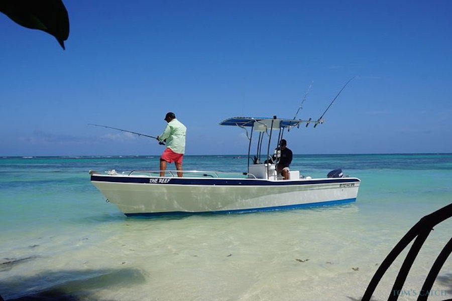 Fishing Charter The Reef