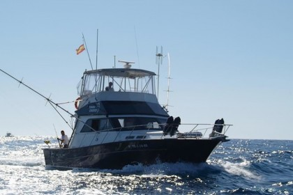 Tonina Cruises Tenerife fishing