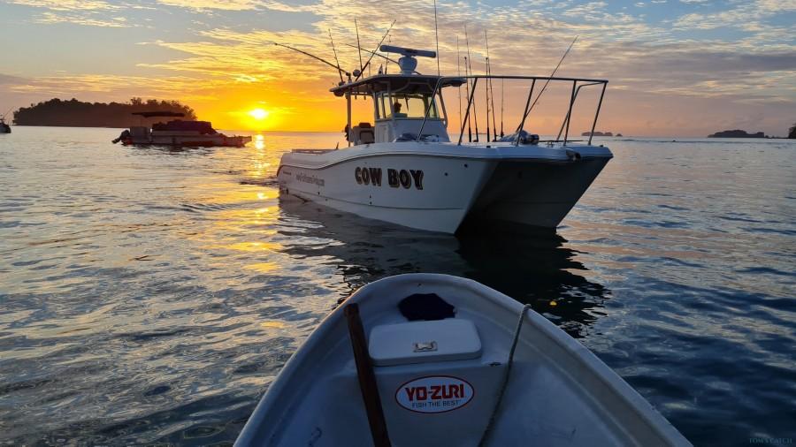 Fishing Charter Top Cat