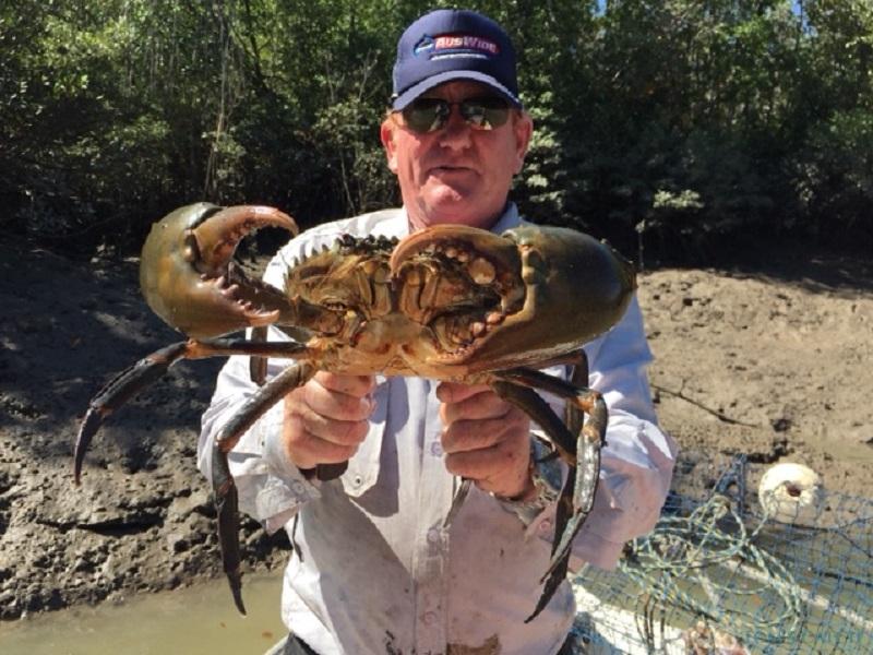 Fishing Charter TOP END SPORTFISHING
