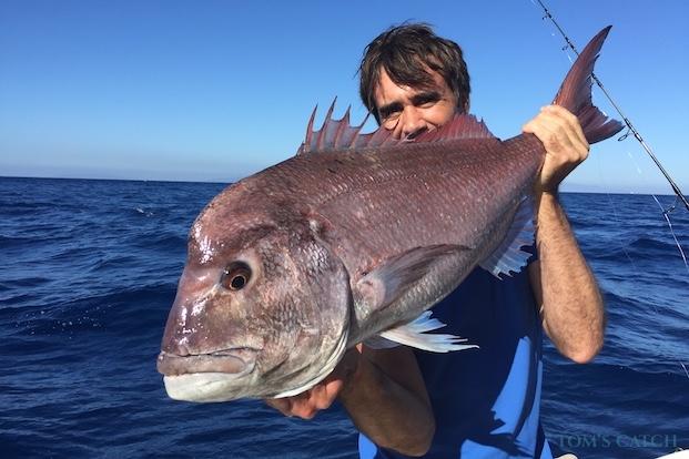 Pink Dentex fishing