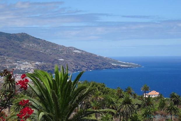 Fishing trips in Canary Islands