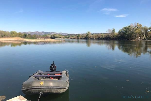 Fishing trips in Ebro