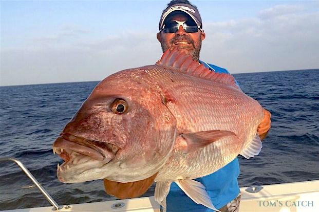 Fishing trips in Fuerteventura