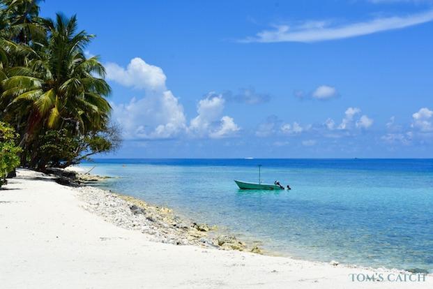 Fishing trips in Maldives