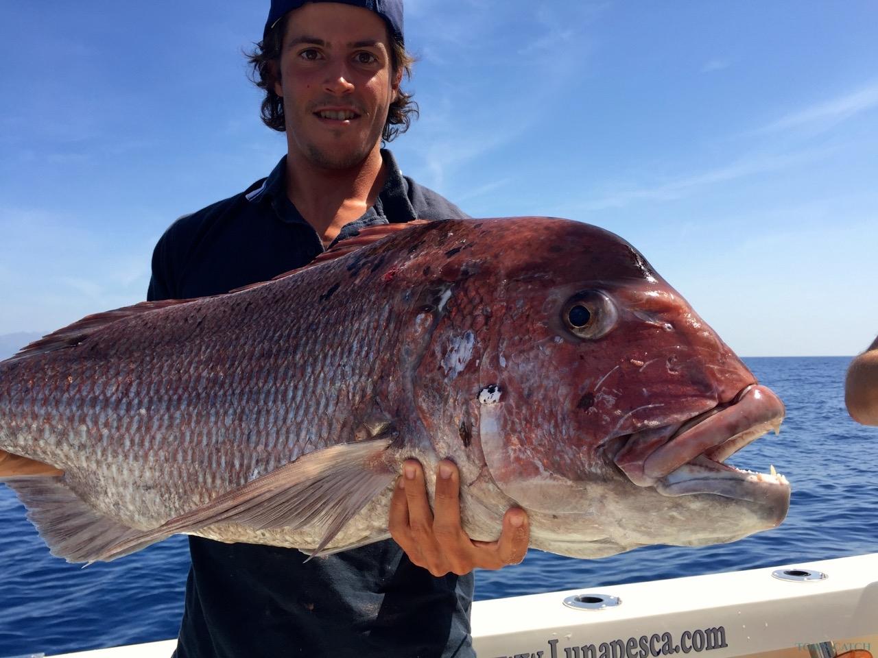 Marbella fishing zone