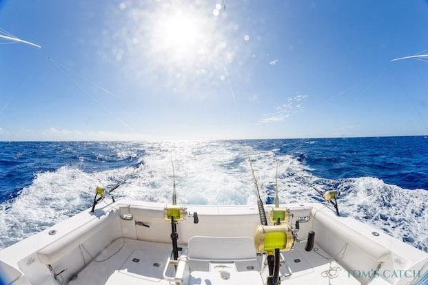 Fishing trips in Mauritius
