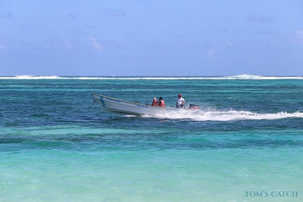 Fishing trips in Punta Cana