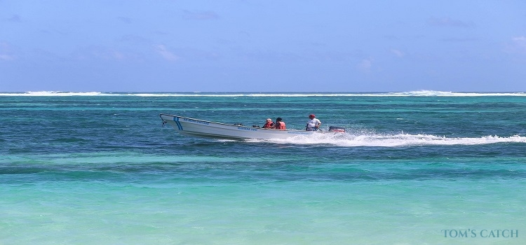Punta Cana fishing zone