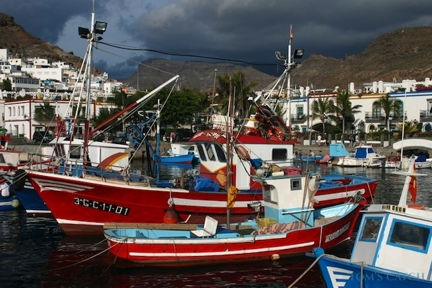 Tenerife fishing zone