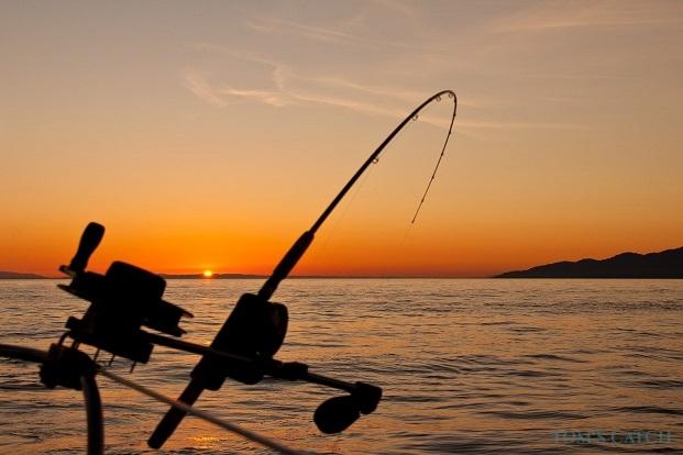 Fishing trips in Zanzibar