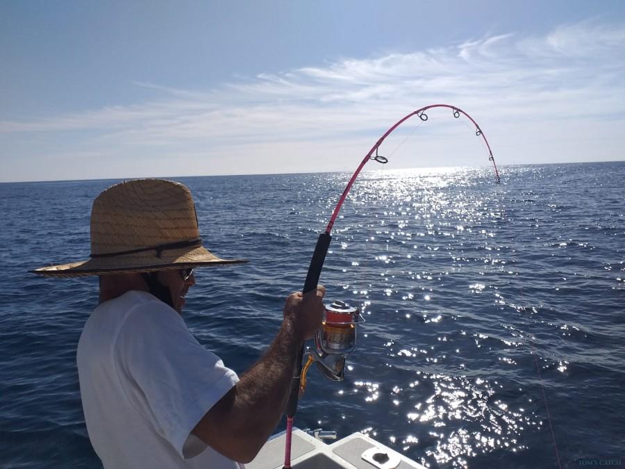 Charter de pêche AlbakoraCat