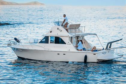 Bertram 35ft Fishing Crete Island  pêche