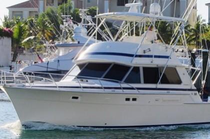 Bertram 42 République Dominicaine pêche