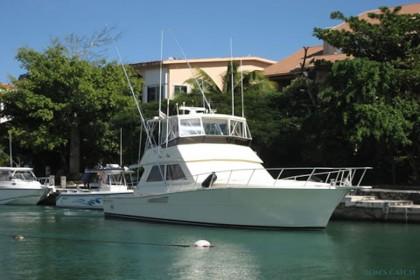 Charter de pêche Big Fish