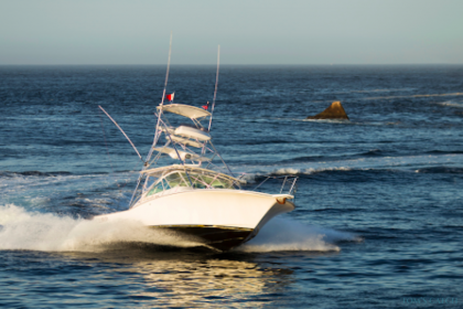 Charter de pêche Bill Collector