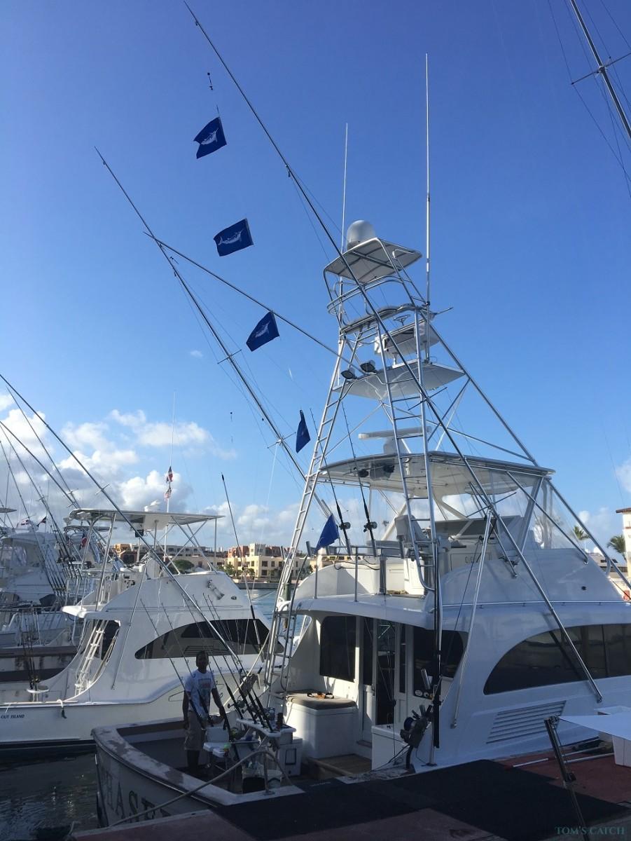 Charter de pêche Chaser