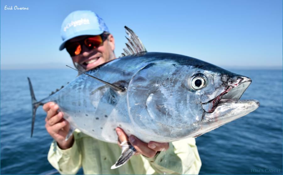 Charter de pêche Chasing Blue