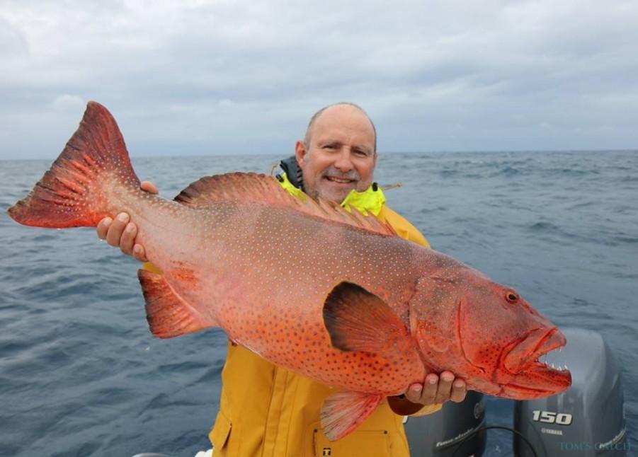 Charter de pêche Emeraude II