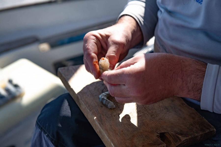 Charter de pêche Es Cau