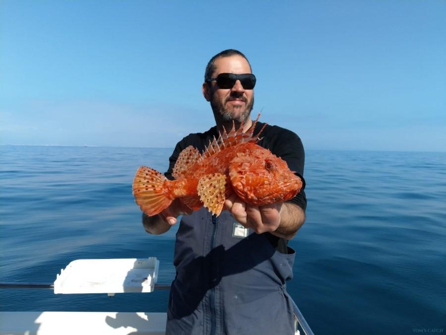 Charter de pêche Garrote