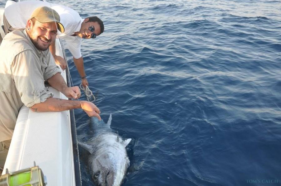 Charter de pêche Gommone 850